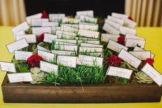 Cute escort cards in grass and succulents