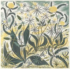 Sollas Sands - a linocut print by Angie Lewin