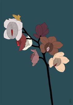 stephanie sarley flor