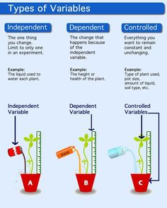 description of independent variable, dependent variable, and control