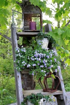 ♔ Shabby cottage garden / gardening inspiration ideas - wood ladder display with lantern light, flowers, etc.