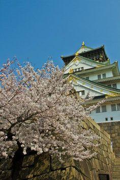 Japan Trip 2012 vol. 2 (Kobe