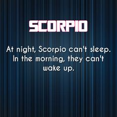 """At night, Scorpio can't sleep. In the morning, they can't wake up."" :)"