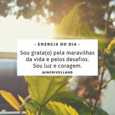 Sou grata(o) pela maravilhas da vida e pelos desafios. Sou luz e coragem. _ ✓ Mantra, do sânscrito MAN (mente) TRA (controle),… Mantra, Daily Reminder, Hadith, Good Vibes, Reiki, Namaste, Letter Board, Affirmations, Insight