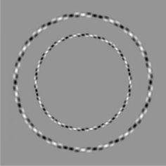 Believe it or not, these are two perfectly round concentric circles