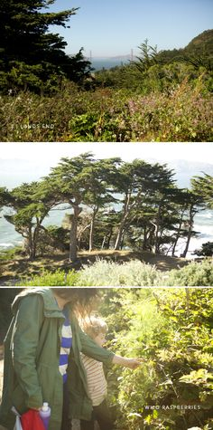 Lands End hike in San Francisco via Oh Happy Day