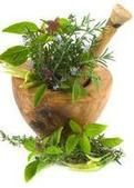 """Grow Your Own Herbal """"Medicine"""" Kit"""