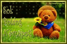 Send this cute card to everyone on this Teddy Bear Day. Free online Cute Teddy Bear With Love ecards on Teddy Bear Day Good Afternoon Quotes, Good Morning Messages, Good Morning Wishes, Day Wishes, Good Morning Quotes, Happy Teddy Day Images, Happy Teddy Bear Day, Teddy Bear Cartoon, Cute Teddy Bears