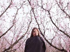 Photography by Sandra Lazzarini (7)