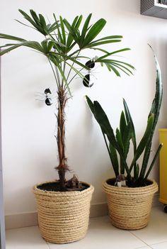 Um vaso-arranhador para gatos – Keep up with the times. We're here for you. Handmade Home, Sisal, Rope Crafts, Diy And Crafts, Diy Inspiration, Diy Storage, Plant Decor, House Plants, Flower Pots