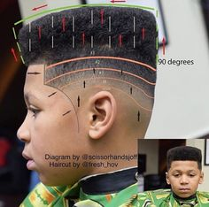 Picture of a haircut diagram to see what a perfect fade is.