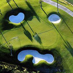 golf green face