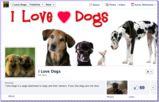 Adopt the dog