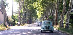 Nationale 7,une 4 cv et de jolis  platanes vers les  vacances en Provence, sur la Cote d' Azur, France, Europe. Beautiful Roads, Europe, Old Pictures, Road Trip, Routes, Cv, Photos, Places, Morocco
