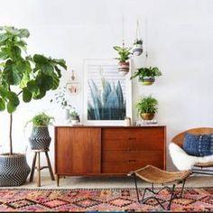 14 house plants that won't feel like chores