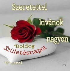 Happy, Floral, Flowers, Roses, Ser Feliz, Royal Icing Flowers, Flower, Flower, Florals