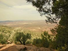 Landscape in #Andalucia (#Spain). http://www.europeosviajeros.com