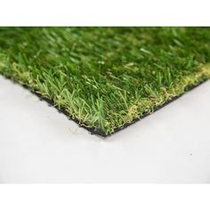Grass & Grass Seed at Lowes.com Growing Grass From Seed, Landscape Materials, Artificial Turf, Grass Seed, Lush Green, Lawn Care, Lawn And Garden, Outdoor Gardens, Garden Design