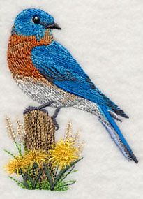 Machine Embroidery Designs at Embroidery Library! - 31414
