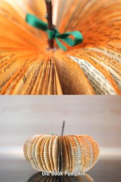 Use those old book pages to create a stunning paper book page pumpkin craft! This easy to make paper pumpkin is ideal for adding to your fall decor! Halloween Pumpkin Stencils, Pumpkin Crafts, Paper Pumpkin, Pumpkin Books, Old Book Pages, Old Books, Easy Fall Crafts, Diy Crafts For Kids, Diy Paper