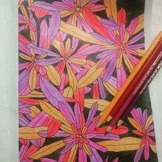 Finalizei mais um.. ⚘ #arteterapia #book #jardimencantado  #editoraalaude #flores #pintura #fabercastell #cores #colors #fundopreto #criatividade #aperfeiçoando #passatempo #saudável #inspiração #adoroo #inspiration @arteantiestres #jardimcolorido #terapianojardim