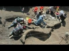 Ancient mammoth skeleton discovered in Mexico City