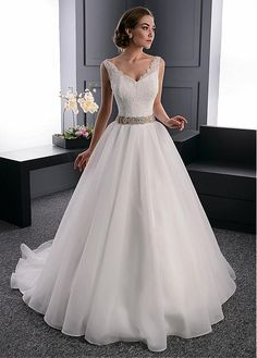 Elegant Organza V-Neck Neckline Ball Gown Wedding Dress With Beaded Lace Appliques