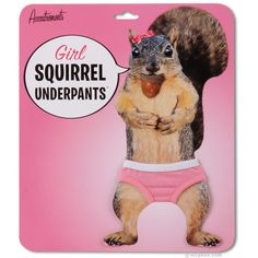 """Girl Squirrel Underpants    The crusade to clothe the squirrels continues! Our regular Squirrel Underpants have done wonders to make the male squirrel population more presentable, but what about the ladies? These dainty pink undies are sure to make the girl squirrels chatter with glee! Each pair of tiny panties has a 3"""" (7.6 cm) waist and is made of 95% cotton and 5% spandex."""