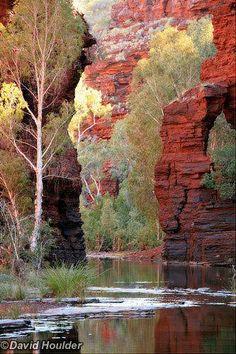 Kalamina Gorge, in the Karijini National Park, Western Australia. #westernaustraliatravel