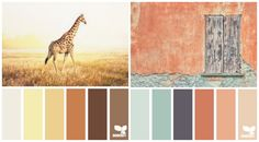 Office Colour scheme - gold and brown - african theme. Office Color Schemes, House Color Schemes, House Colors, African Colors, African Theme, Kitchen Color Palettes, Kitchen Colors, Deco Orange, Color Terracota
