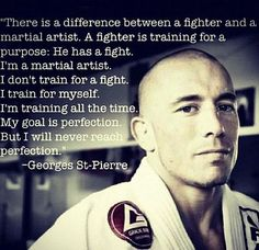 Attached is Georges St. Pierre describing the difference between a fighter and martial artist. Taekwondo, Mma, Kenpo Karate, Martial Arts Quotes, Kyokushin, Ju Jitsu, Warrior Quotes, Martial Artists, Brazilian Jiu Jitsu