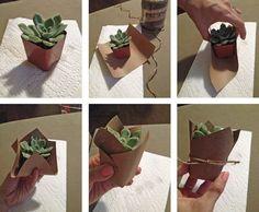 DIY succulent favor - mini succulent party favor