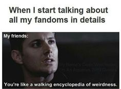 My family does this too. It's why I don't speak about my fandoms in front of people.
