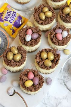 - Jane's Patisserie Individual Creamy Vanilla Cheesecakes topped with Easter Nests, and Mini Chocolate Eggs. Perfect Mini Easter Nest Cheesecakes for Easter! I wanted to make something slightly. Chocolate Chip Cheesecake, Mini Chocolate Chips, White Chocolate, Caramel Cheesecake, Food Cakes, Cheesecake Recipes, Dessert Recipes, Easter Cheesecake, Lemon Cheesecake