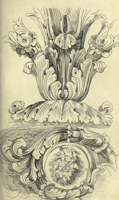 Guide for drawing the acanthus, and every descr...