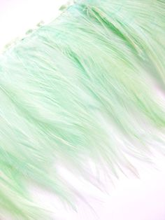 Mint Green Hackle Feather Fringe for fascinators, millinery and crafts (60 plus feathers). $5.00, via Etsy.