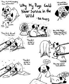 Bah Humpug: Survival Skills