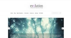 Evolution is our first fully responsive design. What makes the theme so special is its ability to adapt to various screen sizes. Evolution come with 4 distinct layouts, each meant to improve your user's experience when browsing on mobile phones and tablets. No longer will they need to zoom and scroll to view your site, as the theme's layout will adapt to the small screen and serve your content in an intuitive way automatically. Just try reducing your browser's window size when preview the…