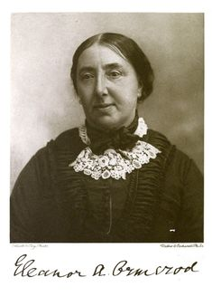 Hidden women of history: Eleanor Anne Ormerod, the self taught agricultural entomologist who tasted a live newt Paris Green, British Family, Environmental Health, Women Names, Independent Women, Writing A Book, Strong Women, Teaching, History