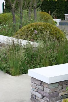 Rich Brothers at Chelsea Flower Show 2015 Flora, Plants, Outdoor, Back Gardens, Outdoor Gardens, Flowers, Garden Planning, Chelsea Flower Show, Sidewalk