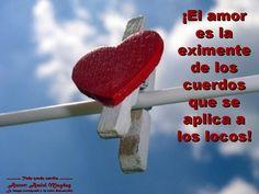El amor es la eximente.