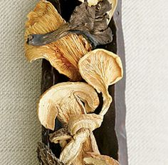 The Bold Flavors of Dried Mushrooms - FineCooking Edible Wild Mushrooms, Dried Mushrooms, Porcini Mushrooms, Stuffed Mushrooms, Dry Mushroom Recipes, Chanterelle Mushroom Recipes, Vegetable Recipes, Portabella Steak, Chinese Mushrooms