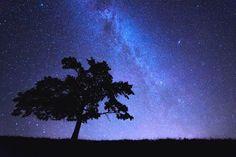 Sternenhimmel fotografieren mit den richtigen Einstellungen! Mit dieser Anleitung und Tipps zum Sterne fotografieren gelingen die besten Sternenbilder!