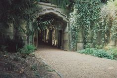 A fun image sharing community. Explore amazing art and photography and share your own visual inspiration! Abandoned Asylums, Abandoned Places, Highgate Cemetery London, The Magnificent Seven, Cemetery Art, Natural Earth, Amazing Art, Find Image, Paths