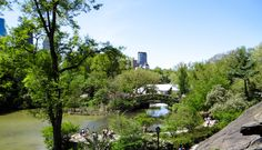 Central Parc NY
