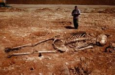 Although a report this week claims that this photo shows a giant skeleton recently discovered in Iran, the photo is old and Photoshopped, and the story is fake.