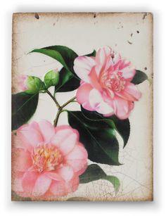 "Gratitude - T309 Sid Dickens Memory Block  ""Joy blooms in a giving heart.""  www.siddickens.com"