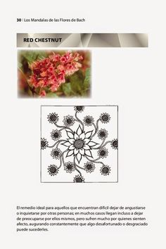 Mandala-RedChestnut.jpg (728×1093)