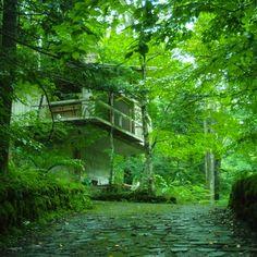 Mountain Lodge at Karuizawa 1962 軽井沢の山荘[吉村別荘] 吉村順三
