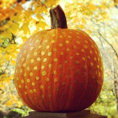 gold polka dot pumpkin
